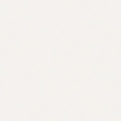 【標準品】[ポリッシュ] CLR-1(White) [マット] CLR-21M(White)