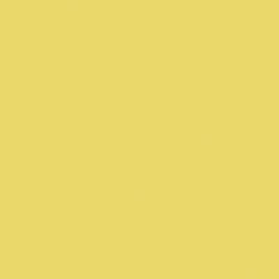 【受注輸入品】[ポリッシュ] CLR-8(Yellow) [マット] CLR-28M(Yellow)