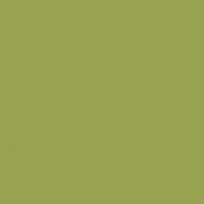 【受注輸入品】[ポリッシュ] CLR-9(Green) [マット] CLR-29M(Green)